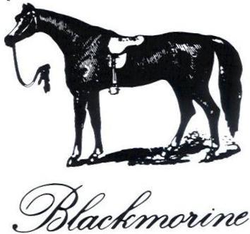 blackmorine_logo_site