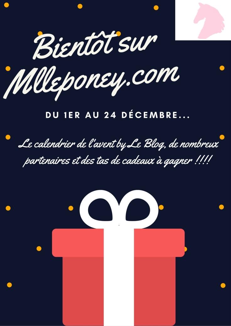 bientot-sur-mlleponey-com