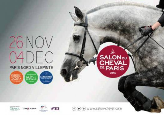 salon_cheval_dec16.jpg
