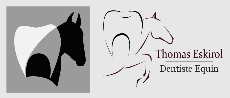 site_internet_banniere_dentiste_equin.png