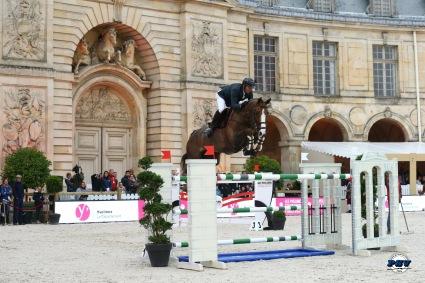 Cinquieme-place-pour-Patrice-Delaveau-et-Aquila-HDC-lors-du-Jumping-International-du-Chateau-de-Versailles.jpg