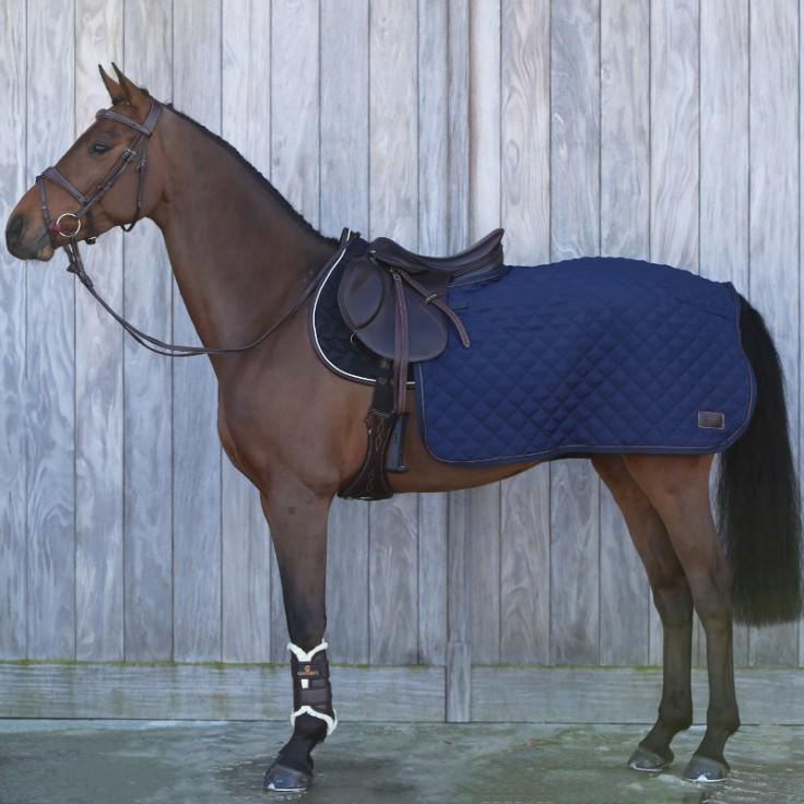 couvre-reins-cheval-bleu-z